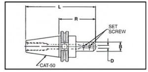 CAT-50-image